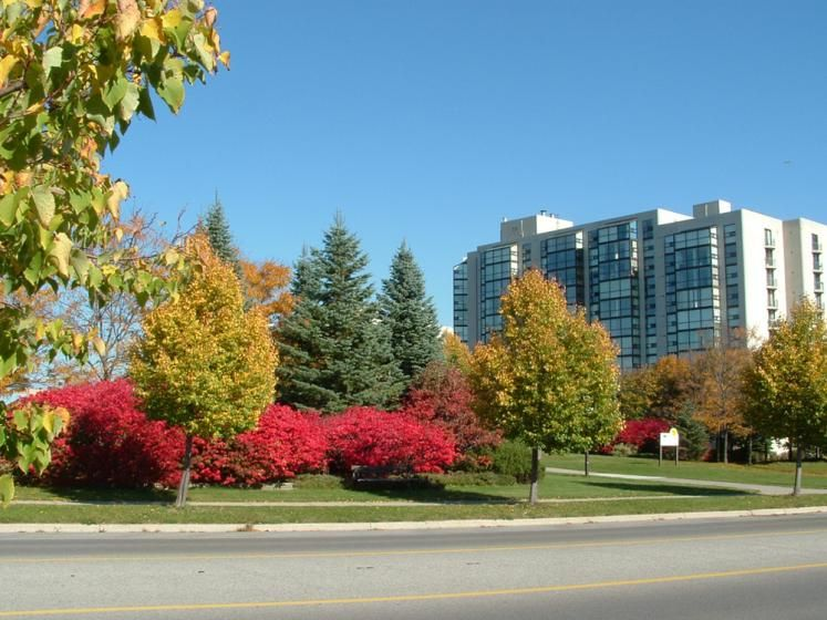 New buildings in Richmond Hill